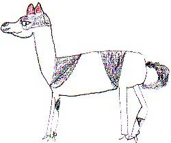 il guanaco